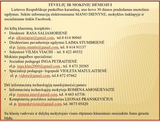 90766425_220325112512942_9135338839512973312_n